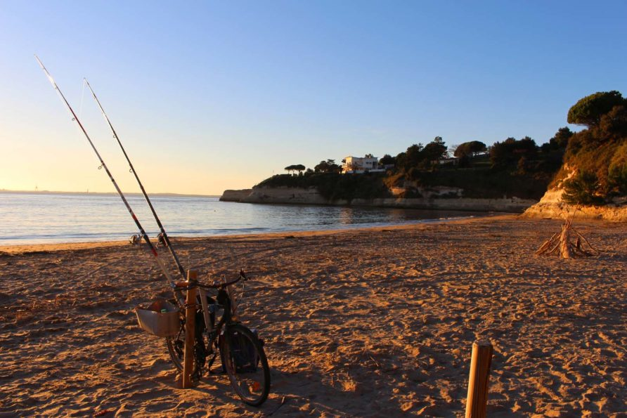 Découvrez Meschers-sur-Gironde